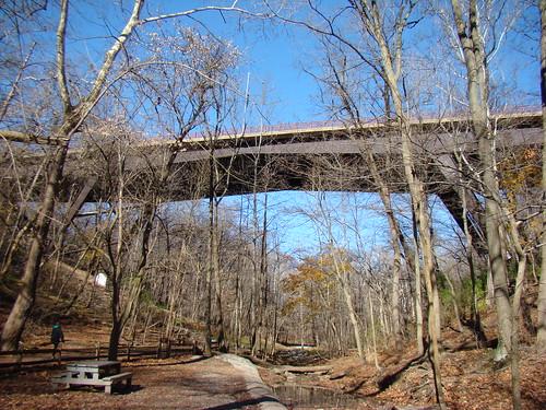 Fern Hollow Bridge, Forbes Ave. - Nov. 18th 2013
