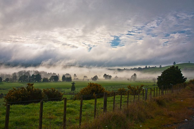 New Zealand foggy hills