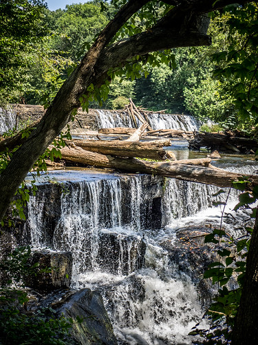 Cedar Falls Park-004