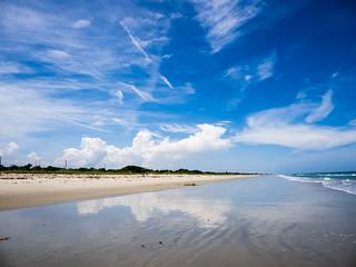 Avalon Beach Park