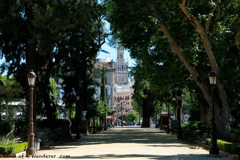 SEVILLA - Jardines de Cristina / Giralda