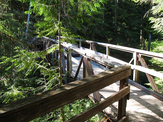 Hoh River Canyon Bridge