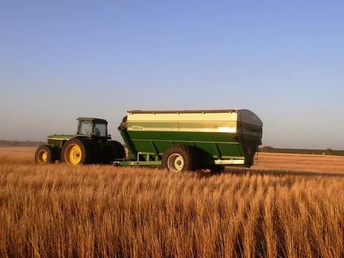 Grain cart in prime position