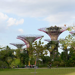 010 Viajefilos en Singapur, Gardens by the bay 01