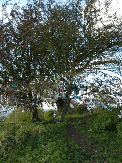 Fall 2012: Ireland - 0104