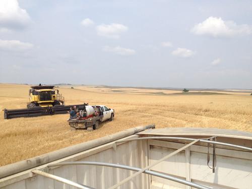 Z Crew: Grain truck view