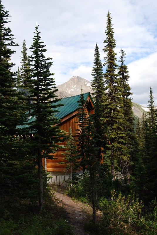 Hermit Thrush Cabin