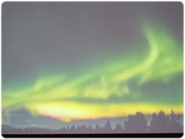Rovaniemi (9)