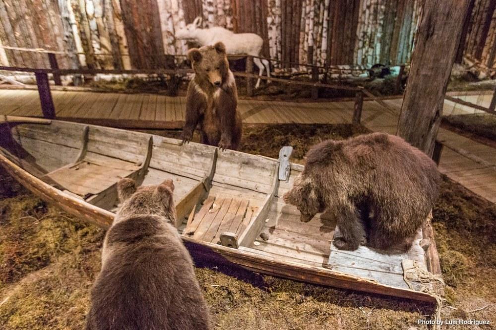 4 días en Laponia sueca-22