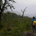 9 viajefilos en Noruega, Hardangervidda 01