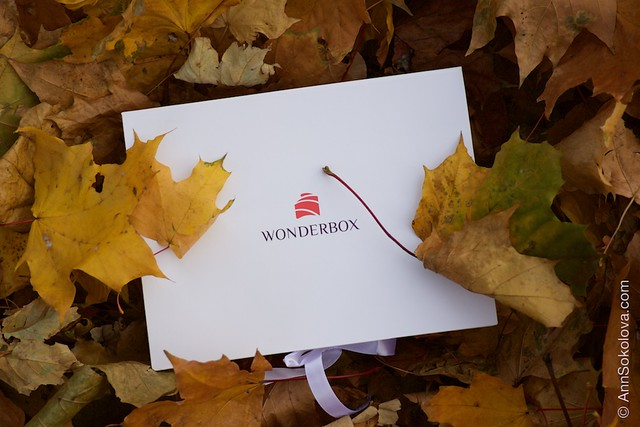 01 Wonderbox September 2014 Anniversary Box