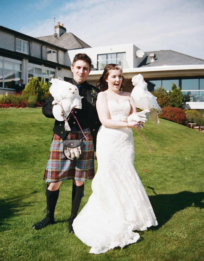 Owls at this Scottish Harry Potter wedding on @offbeatbride
