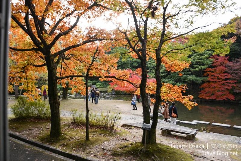 大阪赏枫 万博纪念公园 29