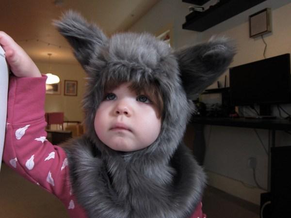 wolfpuppy