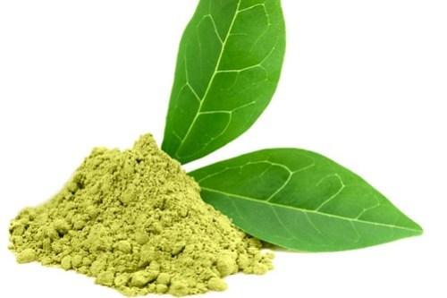 Green  powder matcha tea