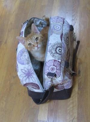 Great Getaway Bag