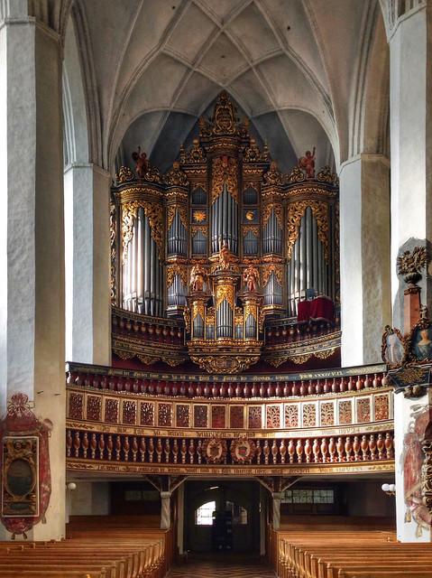 organ...