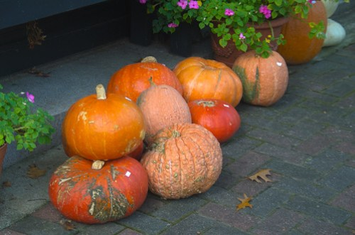 October Gourds