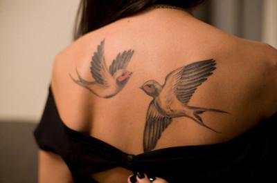 Cute Bird Tattoos Tumblr
