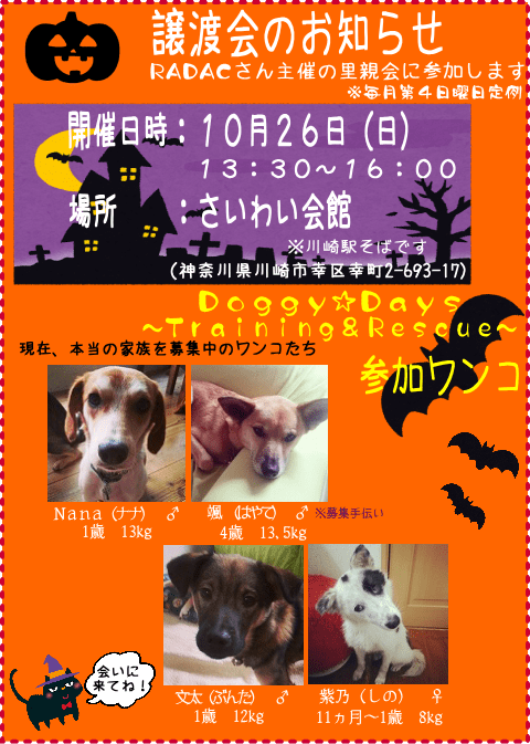 satooyakai-doggy-days20141026