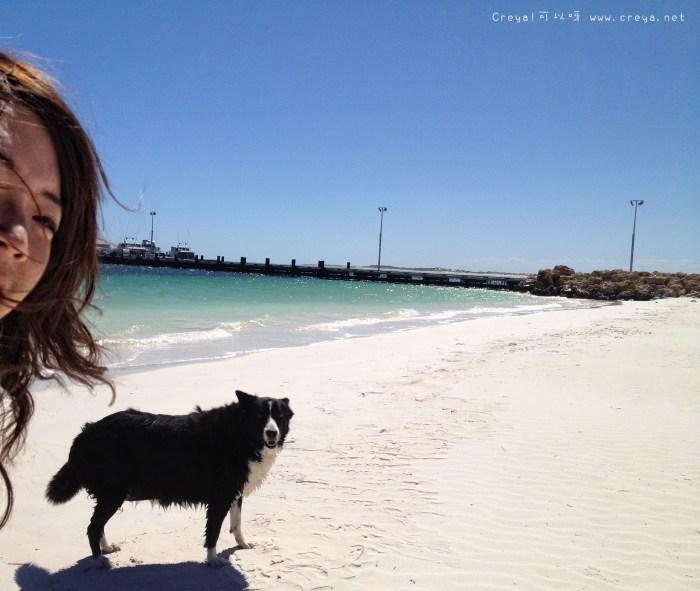 【週間家庭副刊時間】旅遊故事 20141030 「自己一個人旅行,永遠不會是一個人」 之 狗狗版