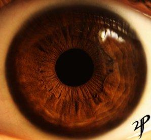 brown_eye_macro_by_yvsan-d5st1ev
