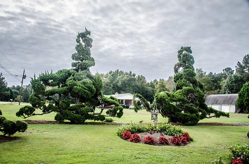 Pearle Fryer Topiary Garden-001