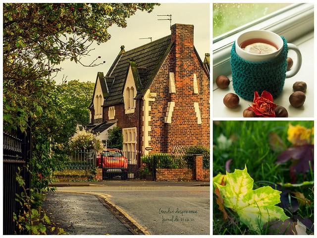 Autumn in Runcorn...