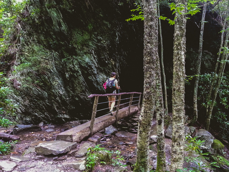 great smoky mountains - alum cave trail