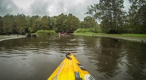 Sparkleberry Swamp with LCU-222