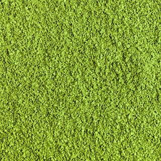 Polvo de Té verde Matcha