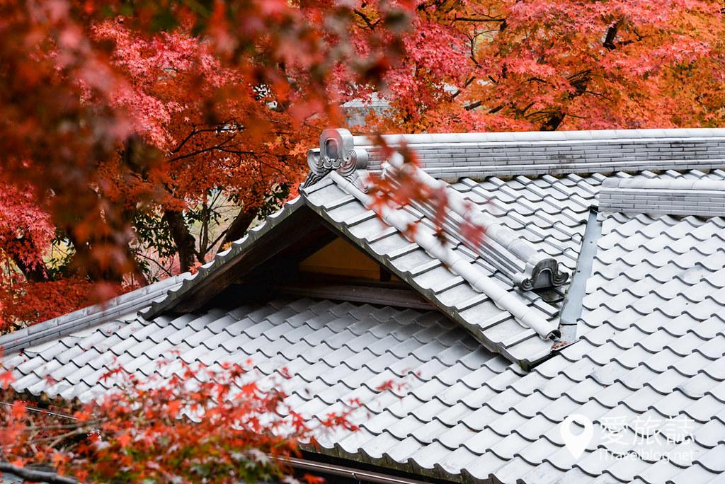 京都赏枫景点 琉璃光院 44