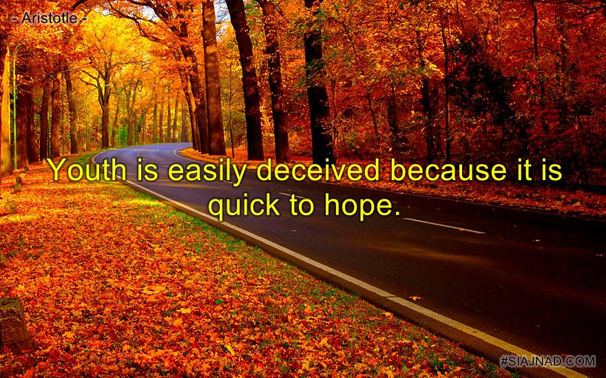 Youth is easily deceived because it is quick to hope