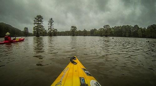 Sparkleberry Swamp with LCU-162