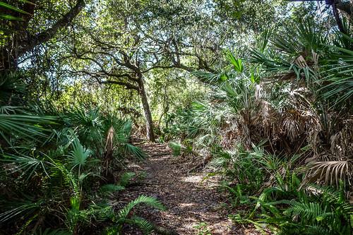 Torpey Saint Lucie Village Park-002