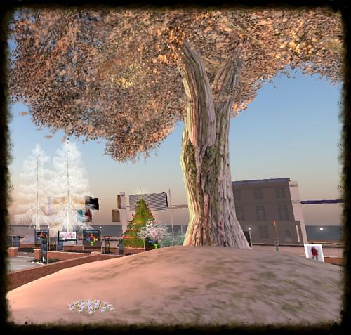 Snapshot_015 (3)