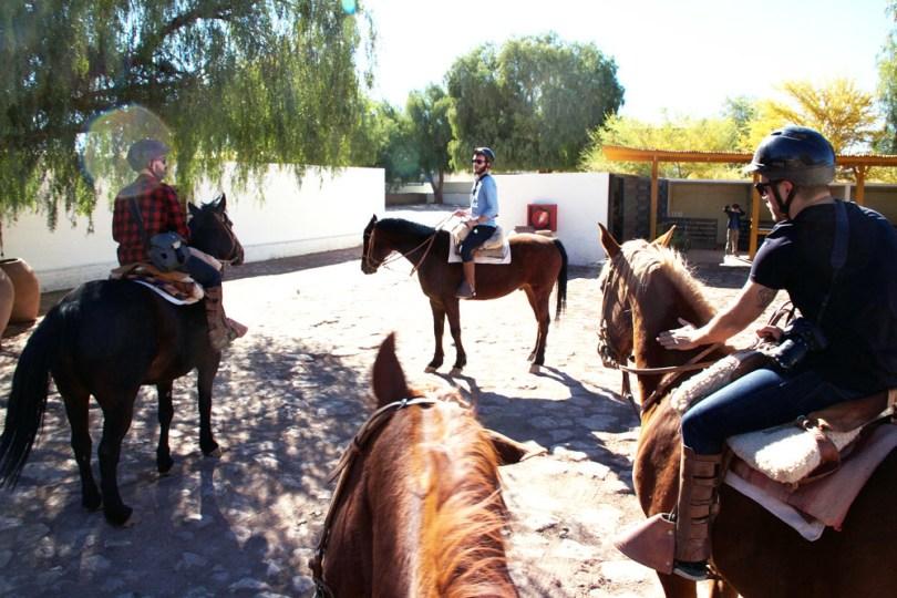cheval Atacama3