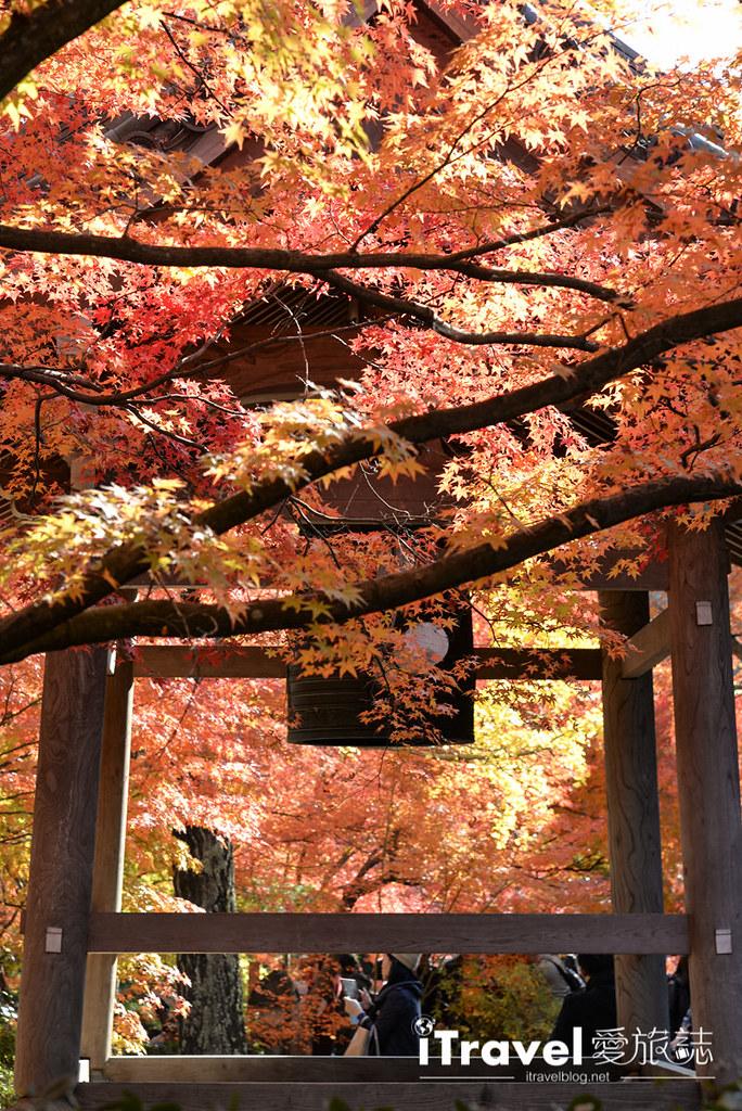 《京都赏枫景点》岚山常寂光寺:枫华正茂引络绎不绝观赏人潮,值得二访的名所