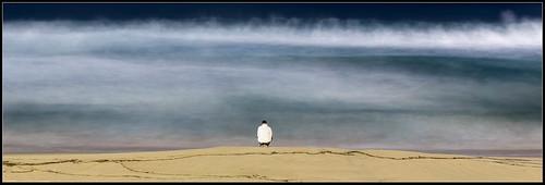 Bondi Beach - alone on a winter night