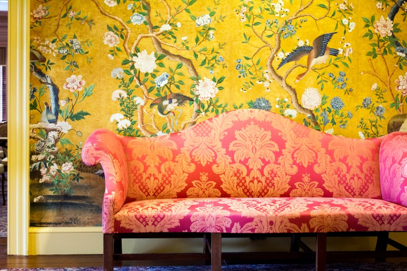 mt-cuba-gardens-delaware-red-sofa-wallpaper-yellow