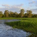 02 Viajefilos en Australia, Kakadu NP 097