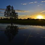 02 Viajefilos en Australia, Kakadu NP 105