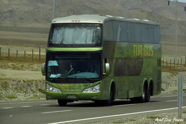 Tur Bus - Norte de Chile - Modasa Zeus / Mercedes Benz (FBPS24) (2413)