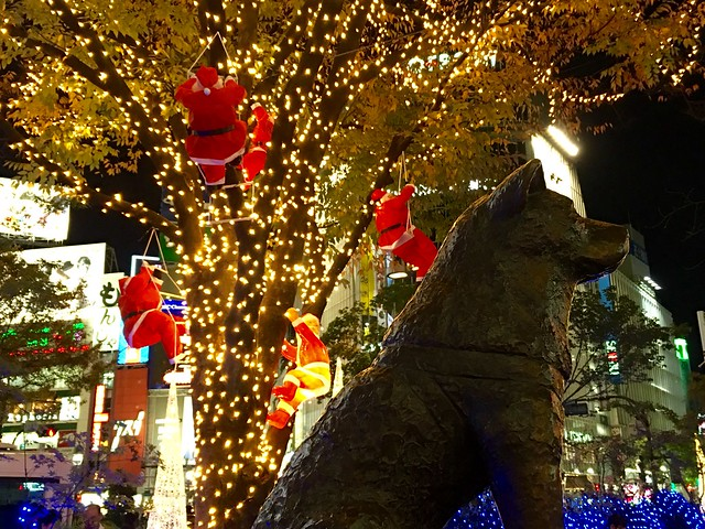 Hachiko and Christmas illumination