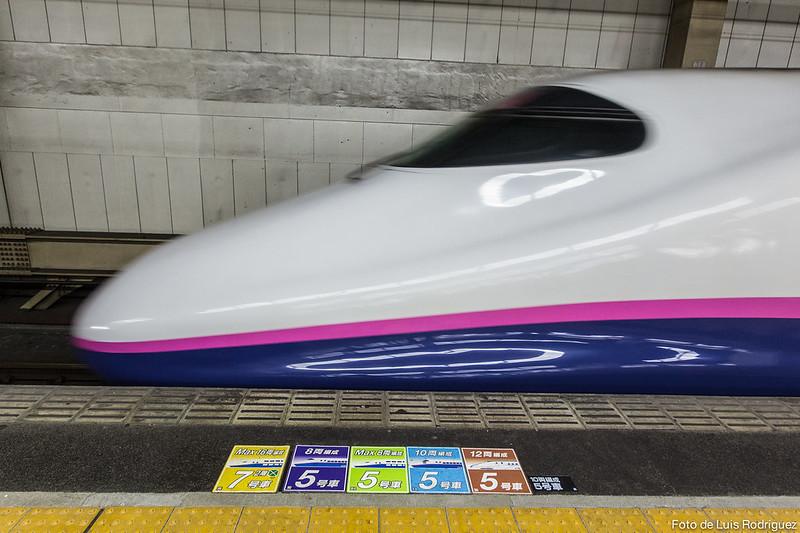 info trenes-17