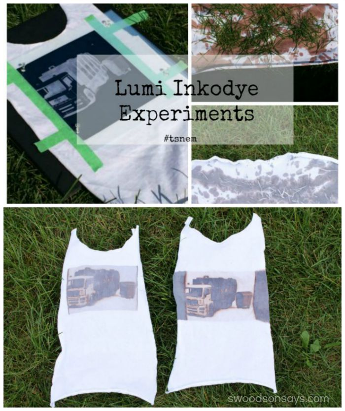 Lumi Inkodye Experiments - Swoodsonsays.com Try Something New Every Month! #tsnem