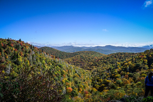 Blue Ridge Parkway in Autumn-46