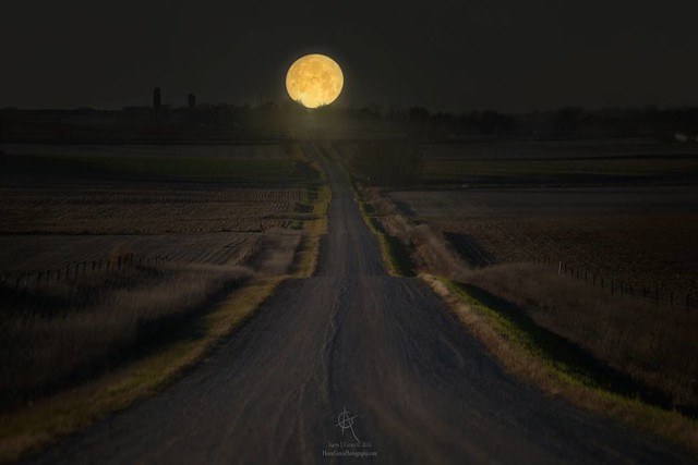 """Setting Supermoon"" by Aaron J. Groen @homegroenphotography (7am)Nov. 14 2016's Supermoon sets over this Road To Nowhere north of Hills, Minnesota. Canon EOS 6D at 280mm HomeGroenPhotography.com 500px.com/AaronGroen #Supermoon #RoadToNowhere #beauti"