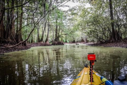 Sparkleberry Swamp with LCU-80