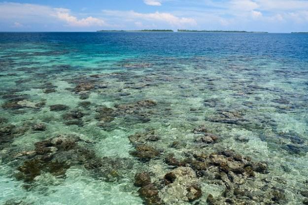 The picnic spot. Pulau Seram